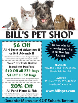 Coupons New Bern S Value